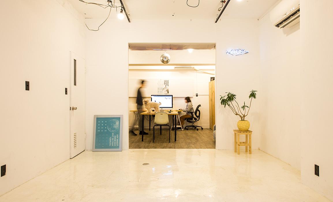 lobo studio pic 1